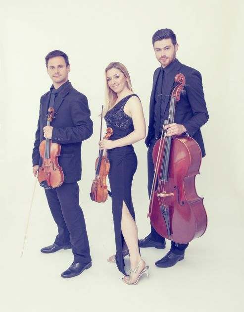 Gallery: The String Quartet