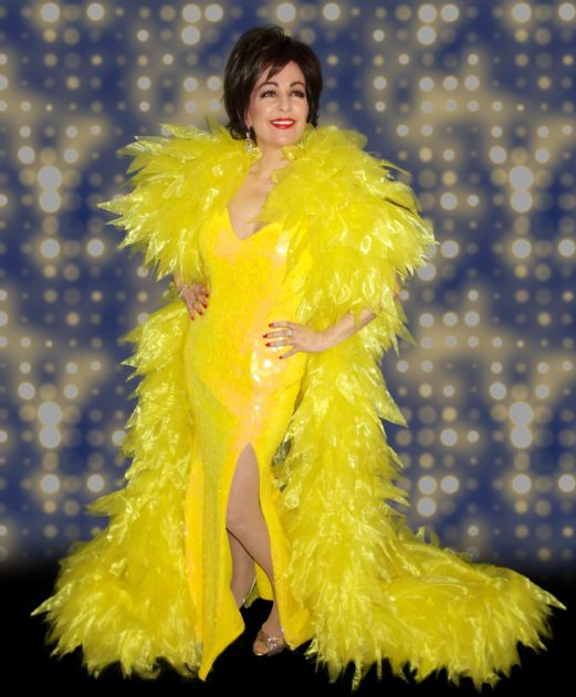 Gallery: The Ultimate Shirley Bassey Tribute Show