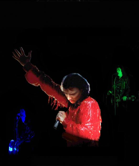 Diamond Nights - Neil Diamond Tribute  Testimonial