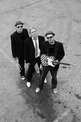 Ska Tribute Bands  Acts