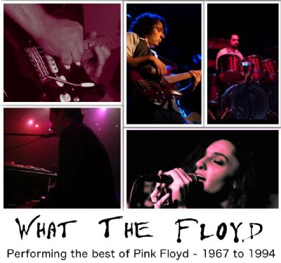 Pink Floyd Tribute Acts